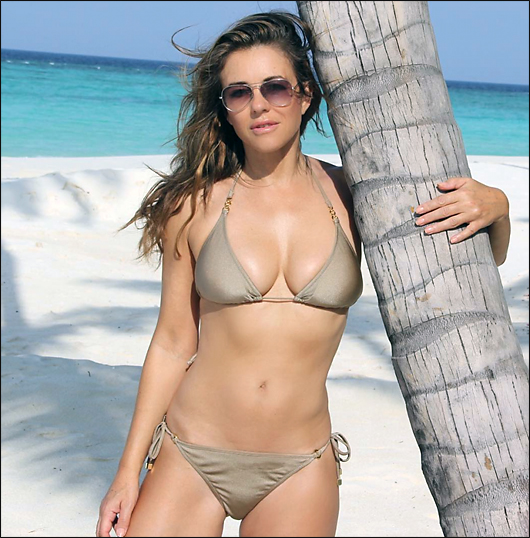 liz hurley bikini sexy