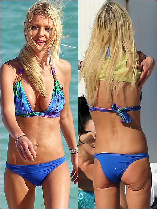 tara reid melting ass