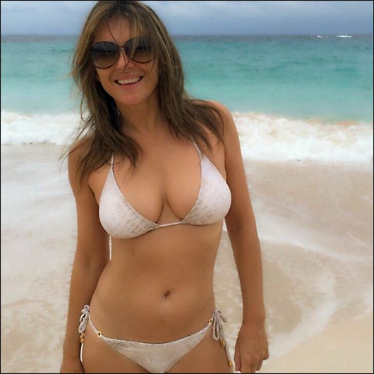 liz hurley bikini twitter pic